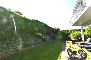 """Photo 19: 12 33922 KING Road in Abbotsford: Poplar Townhouse for sale in """"Kingsview Estates"""" : MLS®# R2282388"""