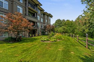 "Photo 21: 409 12268 224 Street in Maple Ridge: East Central Condo for sale in ""STONEGATE"" : MLS®# R2293677"