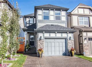 Photo 34: 268 CHAPARRAL VALLEY Mews SE in Calgary: Chaparral Detached for sale : MLS®# C4208291