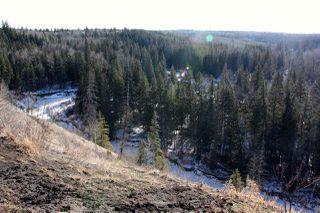 Photo 7: 4142 Aspen Drive in Edmonton: Zone 16 House for sale : MLS®# E4133687