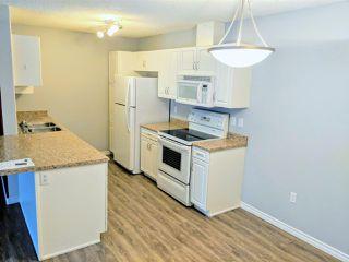 Photo 3: 104 279 Suder Greens Drive NW in Edmonton: Zone 58 Condo for sale : MLS®# E4134458