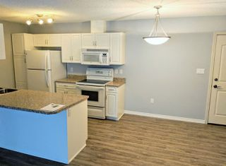 Photo 2: 104 279 Suder Greens Drive NW in Edmonton: Zone 58 Condo for sale : MLS®# E4134458