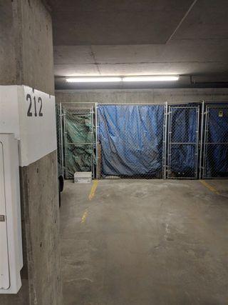 Photo 25: 104 279 Suder Greens Drive NW in Edmonton: Zone 58 Condo for sale : MLS®# E4134458