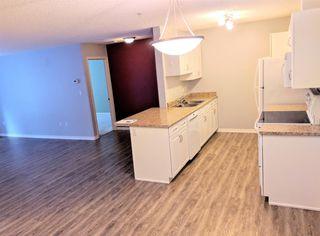 Photo 5: 104 279 Suder Greens Drive NW in Edmonton: Zone 58 Condo for sale : MLS®# E4134458