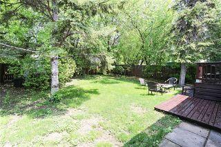 Photo 17: 239 Cheriton Avenue in Winnipeg: Residential for sale (3F)  : MLS®# 1914796