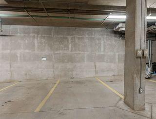 Photo 29: 411 10503 98 Avenue in Edmonton: Zone 12 Condo for sale : MLS®# E4204702