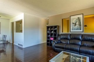 Photo 29: 7920 OSPREY STREET in Mission: Mission BC House for sale : MLS®# R2482190