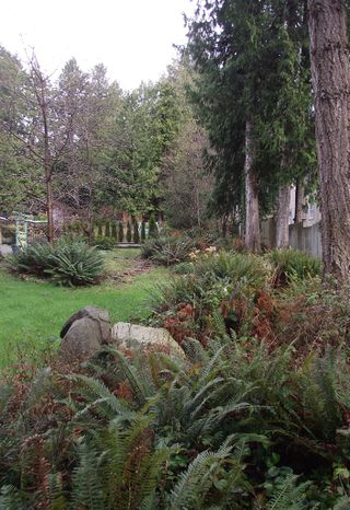 Photo 4: # LOT 8 OCEAN BEACH ESPLANADE BB in Gibsons: Gibsons & Area Land for sale (Sunshine Coast)  : MLS®# V924200