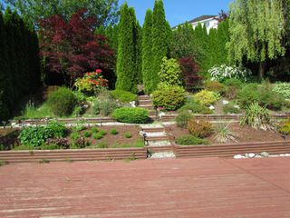 Photo 23: 35335 SANDY HILL RD in ABBOTSFORD: Abbotsford East House for rent (Abbotsford)