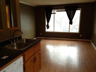 Photo 11: 2828 13 Avenue SE in Calgary: Albert Park Residential Attached for sale : MLS®# C3644766