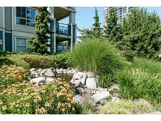 "Photo 6: 401 275 ROSS Drive in New Westminster: Fraserview NW Condo for sale in ""The Grove"" : MLS®# V1128835"