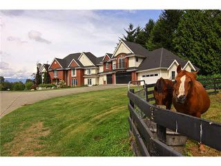 Photo 2: 30041 HARRIS Road in Abbotsford: Bradner House for sale : MLS®# F1447614