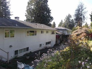 Photo 16: 1655 PALMERSTON Avenue in West Vancouver: Ambleside House for sale : MLS®# R2125662