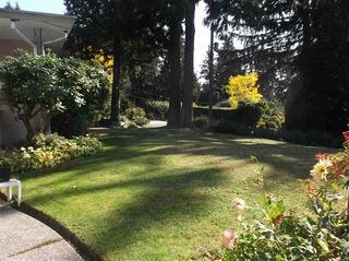 Photo 6: 1655 PALMERSTON Avenue in West Vancouver: Ambleside House for sale : MLS®# R2125662