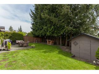 Photo 20: 26550 28B Avenue in Langley: Aldergrove Langley House for sale : MLS®# R2164827
