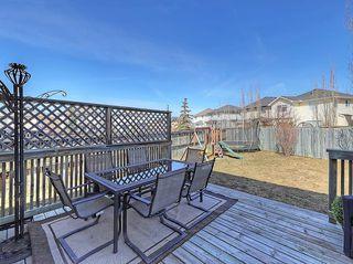 Photo 36: 189 CITADEL RIDGE Close NW in Calgary: Citadel House for sale : MLS®# C4181114