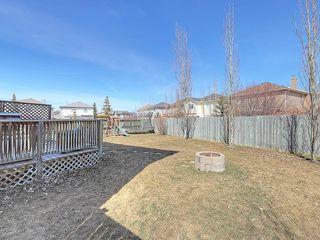 Photo 35: 189 CITADEL RIDGE Close NW in Calgary: Citadel House for sale : MLS®# C4181114