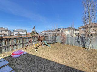 Photo 38: 189 CITADEL RIDGE Close NW in Calgary: Citadel House for sale : MLS®# C4181114