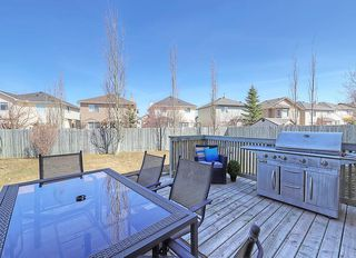 Photo 37: 189 CITADEL RIDGE Close NW in Calgary: Citadel House for sale : MLS®# C4181114