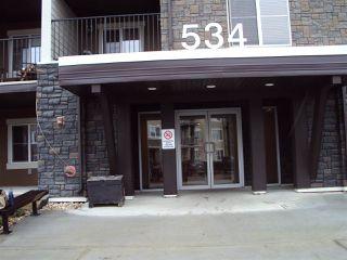 Main Photo: 215 534 WATT Boulevard in Edmonton: Zone 53 Condo for sale : MLS®# E4121096