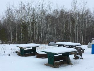 Photo 7: : Rural Westlock County Cottage for sale : MLS®# E4137135