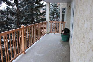 Photo 17: 312 10915 21 Avenue in Edmonton: Zone 16 Condo for sale : MLS®# E4138813