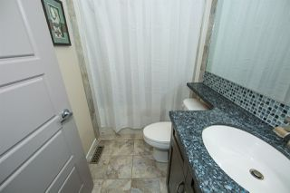 Photo 15: 2120 70 Street in Edmonton: Zone 53 House for sale : MLS®# E4147013
