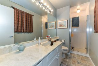 Photo 26: 24 WESTRIDGE Crescent in Edmonton: Zone 22 House for sale : MLS®# E4149854