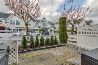 "Photo 18: 34 23575 119 Avenue in Maple Ridge: Cottonwood MR Townhouse for sale in ""HOLLY HOCK"" : MLS®# R2357874"