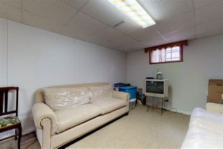 Photo 22: 10902 66 Avenue in Edmonton: Zone 15 House for sale : MLS®# E4154987