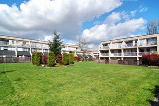 """Photo 13: 60 17710 60 Avenue in Surrey: Cloverdale BC Townhouse for sale in """"Clover Park Gardens"""" (Cloverdale)  : MLS®# R2386109"""