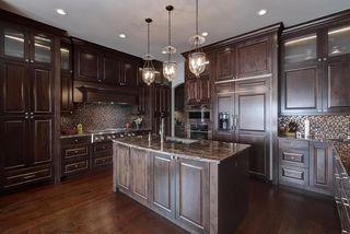 Photo 10: 2784 WHEATON Drive in Edmonton: Zone 56 House for sale : MLS®# E4173254