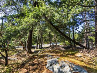 Photo 4: 2378 Andover Rd in NANOOSE BAY: PQ Fairwinds Land for sale (Parksville/Qualicum)  : MLS®# 837735