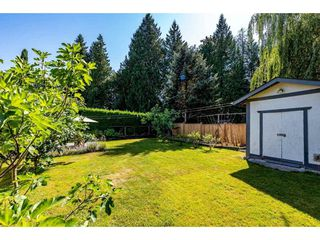 Photo 23: 12379 EDGE Street in Maple Ridge: East Central House for sale : MLS®# R2481730