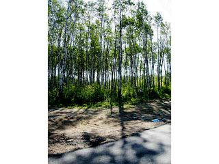 Photo 2: Lot 2 Whitetail Ridge Estates: Rural Bonnyville M.D. Rural Land/Vacant Lot for sale : MLS®# E3394434