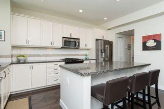 Photo 20: 17272 3A Avenue in Surrey: Pacific Douglas House for sale (South Surrey White Rock)  : MLS®# R2061138