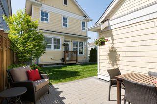 Photo 46: 17272 3A Avenue in Surrey: Pacific Douglas House for sale (South Surrey White Rock)  : MLS®# R2061138