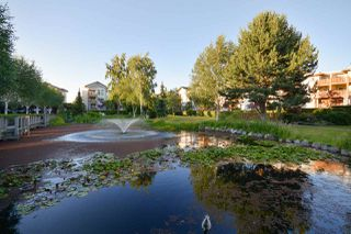 "Photo 15: 312 5500 ANDREWS Road in Richmond: Steveston South Condo for sale in ""Southwater"" : MLS®# R2081366"