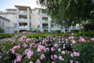 "Photo 17: 312 5500 ANDREWS Road in Richmond: Steveston South Condo for sale in ""Southwater"" : MLS®# R2081366"