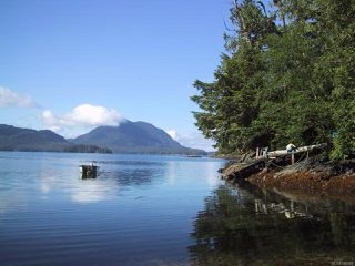 Main Photo: LT 3 Cypress Bay in TOFINO: PA Tofino Single Family Detached for sale (Port Alberni)  : MLS®# 740889