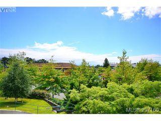 Photo 18: 403 894 Vernon Ave in VICTORIA: SE Swan Lake Condo Apartment for sale (Saanich East)  : MLS®# 579898