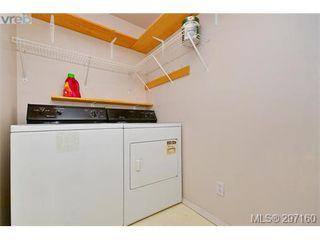 Photo 15: 403 894 Vernon Ave in VICTORIA: SE Swan Lake Condo Apartment for sale (Saanich East)  : MLS®# 579898
