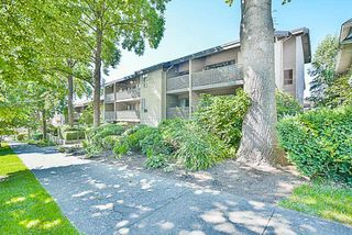 """Photo 19: 208 1549 KITCHENER Street in Vancouver: Grandview VE Condo for sale in """"DHARMA DIGS"""" (Vancouver East)  : MLS®# R2179867"""