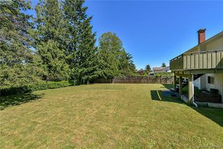 Photo 11: 1836 Grandview Dr in VICTORIA: SE Gordon Head House for sale (Saanich East)  : MLS®# 763092