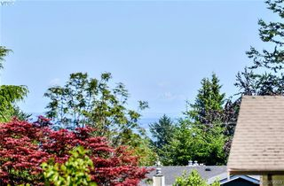 Photo 19: 1836 Grandview Dr in VICTORIA: SE Gordon Head House for sale (Saanich East)  : MLS®# 763092