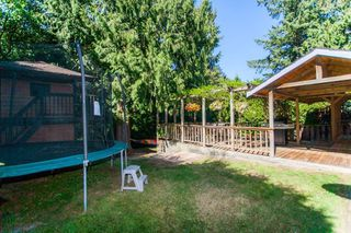 Photo 10: 4759 202 Street in Langley: Langley City House for sale : MLS®# R2206255