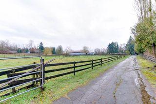 "Photo 3: 25346 64 Avenue in Langley: County Line Glen Valley House for sale in ""County Line Glen Valley"" : MLS®# R2228994"