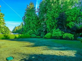 Photo 7: 1310 Lanyon Drive in French Creek: House for sale : MLS®# 397519