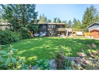 "Photo 19: 4130 206A Street in Langley: Brookswood Langley House for sale in ""Brookswood"" : MLS®# R2275254"
