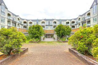 Photo 12: 102 99 BEGIN Street in Coquitlam: Maillardville Condo for sale : MLS®# R2297611